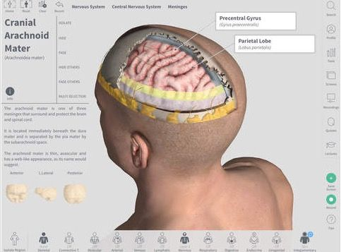 Complete Anatomy ios