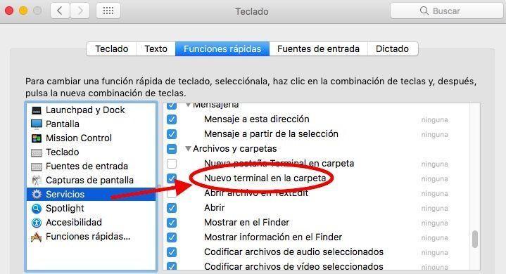 servicios terminal carpeta mac