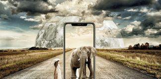 crear fondos de pantalla animados iphone