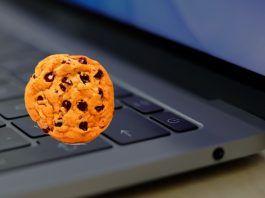 activar cookies safari