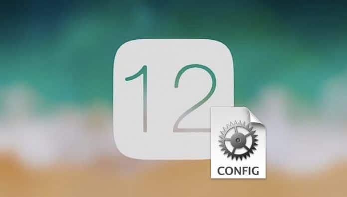 instalar ios 12 sin ser desarrollador